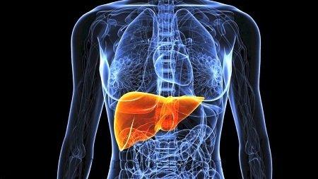 Гепатит от лекарств