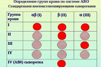 Как узнать какая группа крови у меня