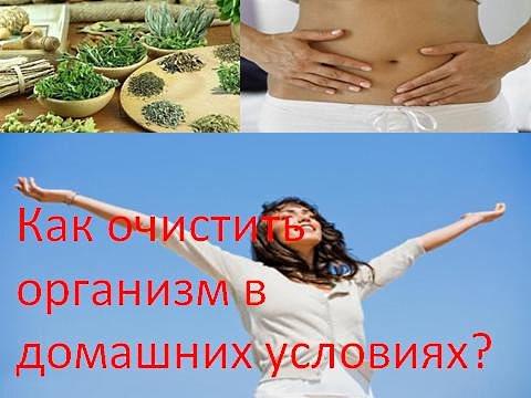 очищение организма, от шлаков, в домашних условиях, очищение организма от токсинов, дарами природы. причины нарушения обмена веществ
