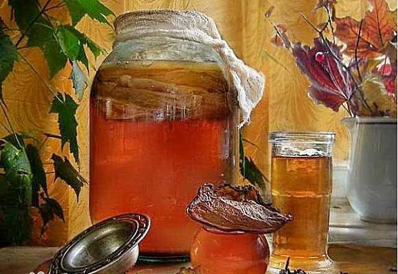 Рецепты лечения чайным грибом
