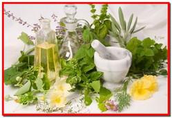 Лекарственные травы и растения. Народные методы лечения